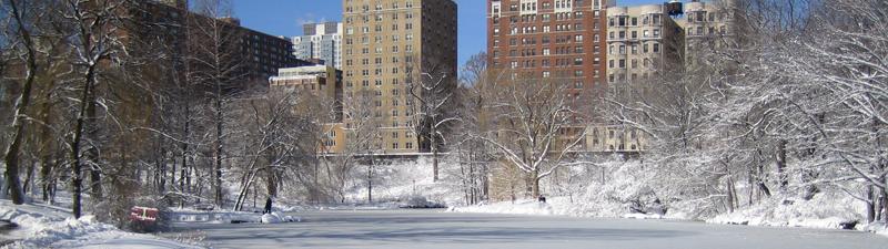 NY in snow
