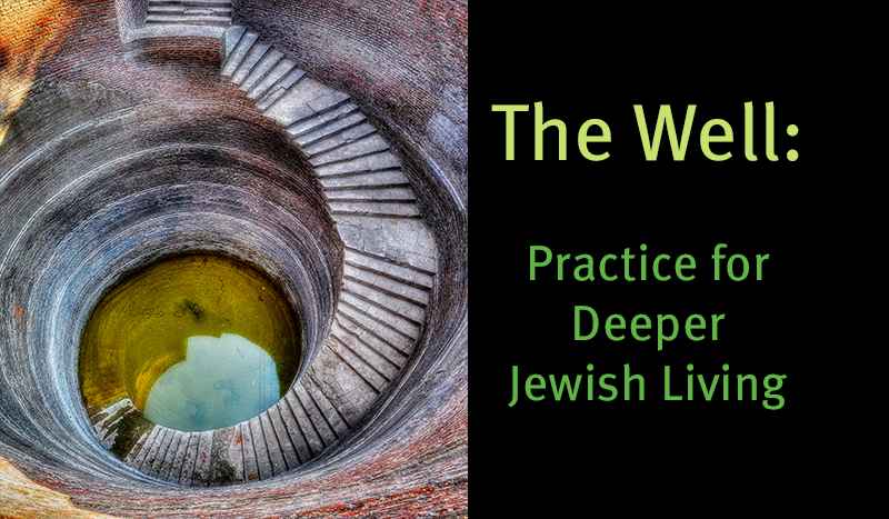 The Institute for Jewish Spirituality presents The Gift of Awareness for Educators. Jewish Mindfulness for You and Your Students: A 13-Module Guided Journey