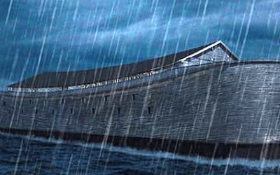 Mindfulness Practice: An Ark in the Storm